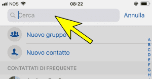 Come bloccare un numero di telefono di un contatto Whatsapp su iPhone