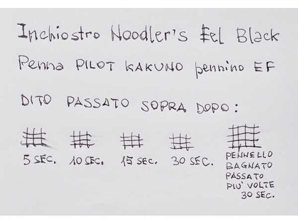 Test tempo di asciugatura e impermeabilita inchiostro penna stilografica Noodler Eel Black